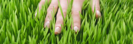 Running hand in grass