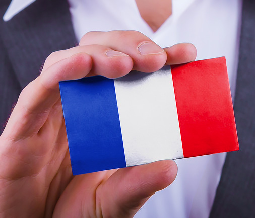But we are French by Nancy Knowlton