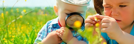 Cultivating curiosity by Nancy Knowlton